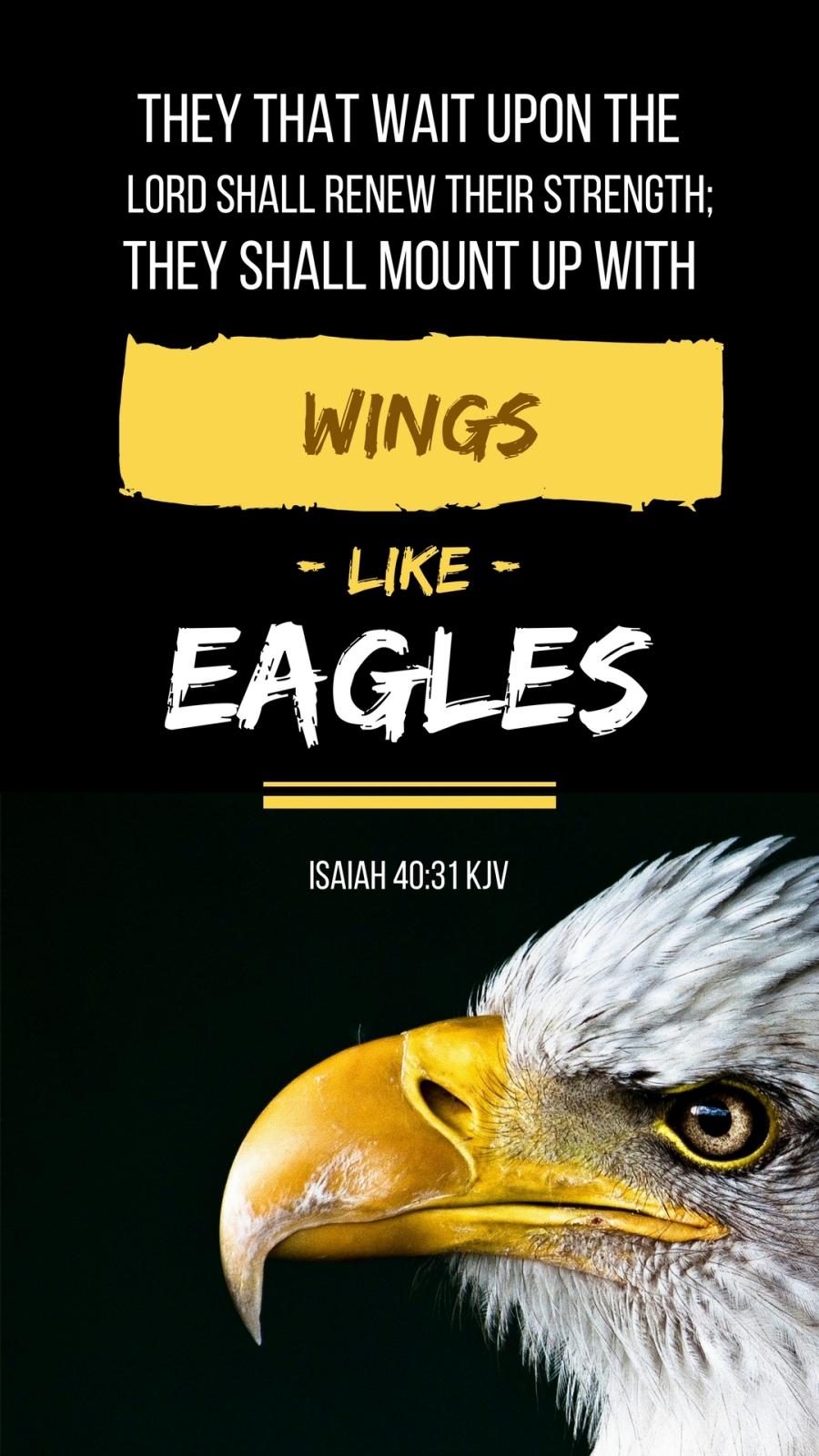 Isaiah40-31KJV (2).jpg